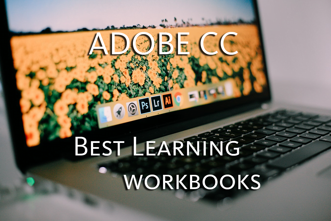 Best Learning Workbooks for Adobe CC
