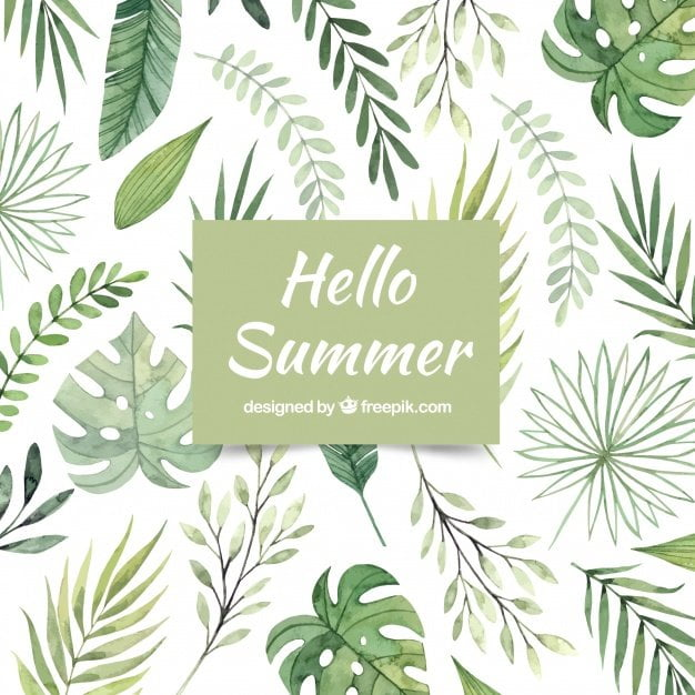 hello summer background watercolor green style